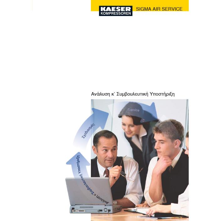 Kaeser Analysis and Advice